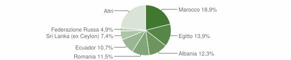 Grafico cittadinanza stranieri - Viganò 2019