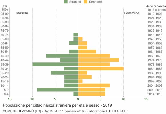 Grafico cittadini stranieri - Viganò 2019