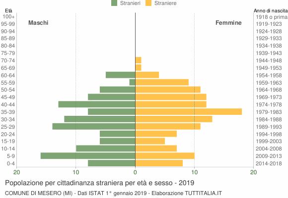 Grafico cittadini stranieri - Mesero 2019