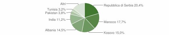 Grafico cittadinanza stranieri - Orzivecchi 2010
