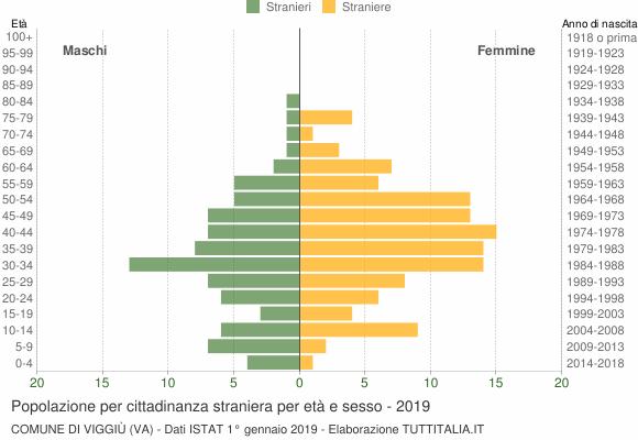 Grafico cittadini stranieri - Viggiù 2019