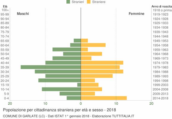 Grafico cittadini stranieri - Garlate 2018