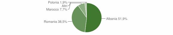 Grafico cittadinanza stranieri - Temù 2008