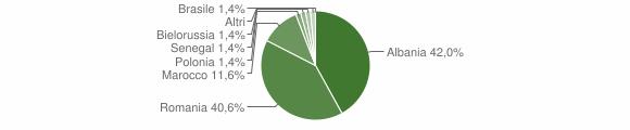 Grafico cittadinanza stranieri - Temù 2010