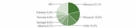 Grafico cittadinanza stranieri - Bassano Bresciano 2010