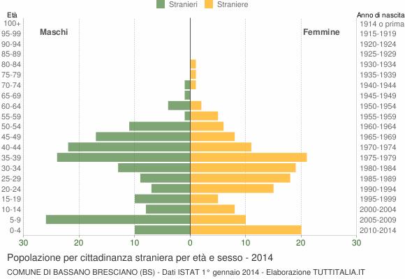 Grafico cittadini stranieri - Bassano Bresciano 2014