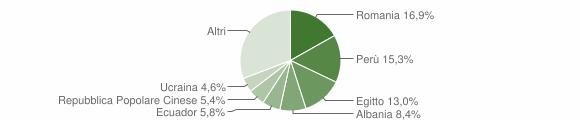 Grafico cittadinanza stranieri - Cologno Monzese 2019