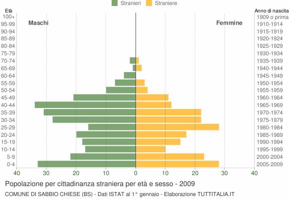 Grafico cittadini stranieri - Sabbio Chiese 2009