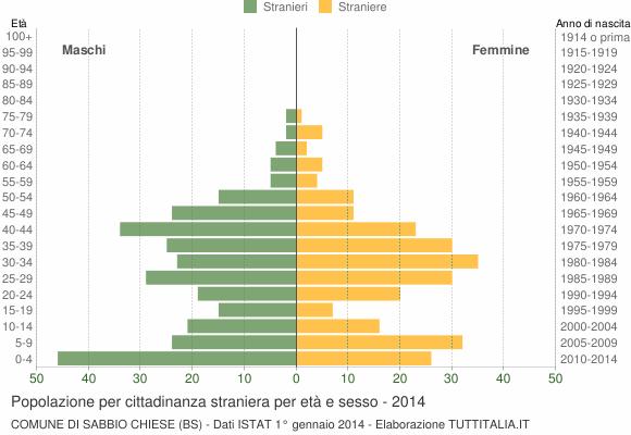 Grafico cittadini stranieri - Sabbio Chiese 2014