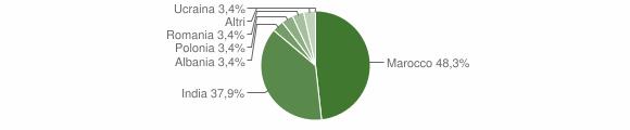 Grafico cittadinanza stranieri - Treviso Bresciano 2008