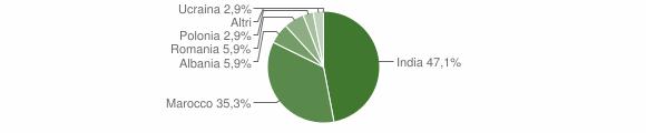 Grafico cittadinanza stranieri - Treviso Bresciano 2010