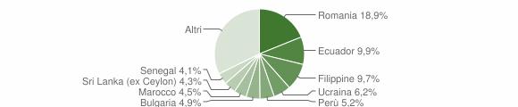 Grafico cittadinanza stranieri - Bussero 2018