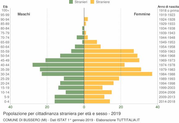 Grafico cittadini stranieri - Bussero 2019