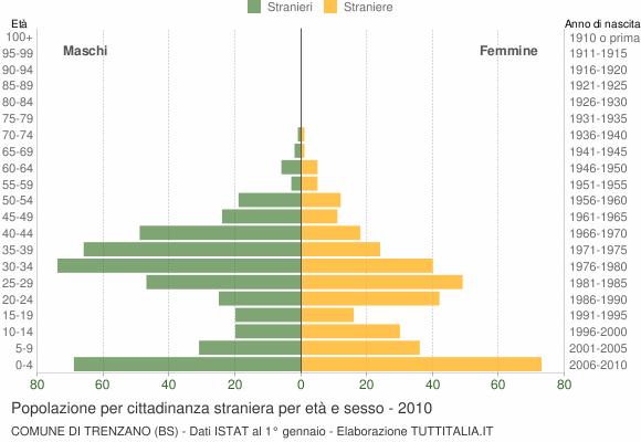 Grafico cittadini stranieri - Trenzano 2010
