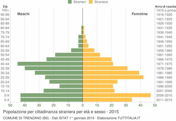 Grafico cittadini stranieri - Trenzano 2015