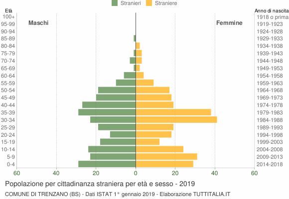 Grafico cittadini stranieri - Trenzano 2019