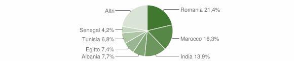 Grafico cittadinanza stranieri - Castiglione d'Adda 2019