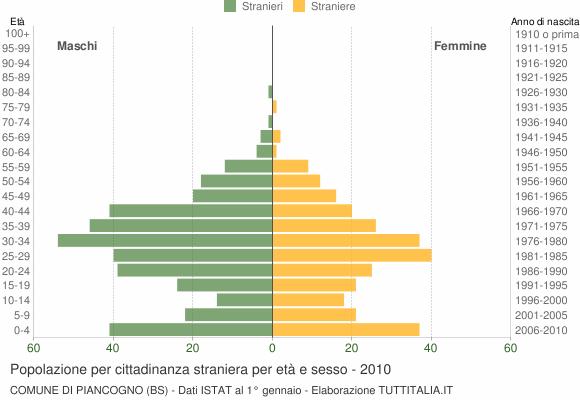 Grafico cittadini stranieri - Piancogno 2010