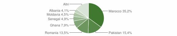 Grafico cittadinanza stranieri - Polaveno 2010