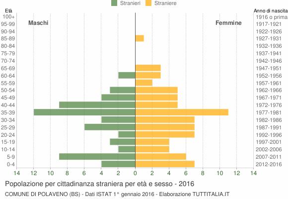 Grafico cittadini stranieri - Polaveno 2016