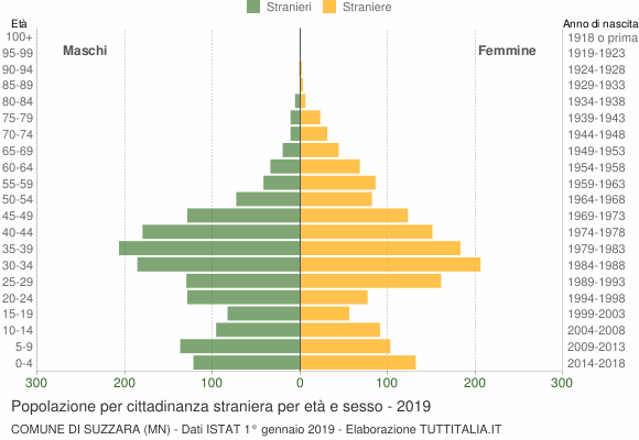 Grafico cittadini stranieri - Suzzara 2019