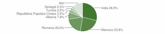 Grafico cittadinanza stranieri - Palosco 2010