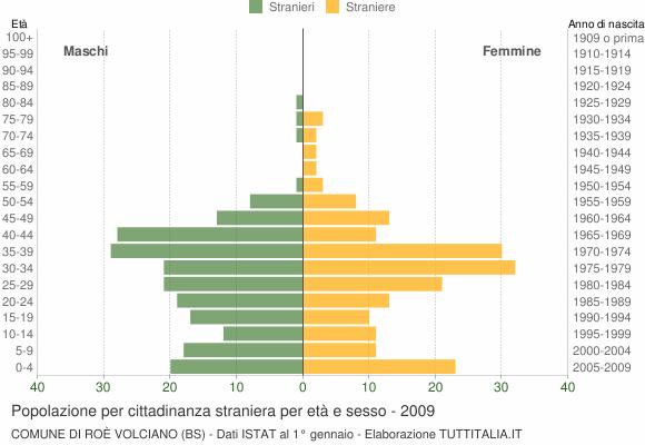 Grafico cittadini stranieri - Roè Volciano 2009