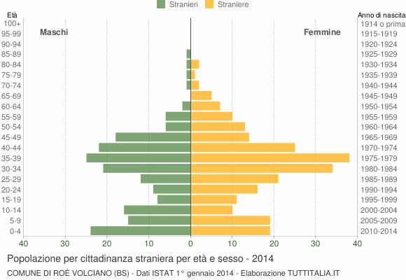 Grafico cittadini stranieri - Roè Volciano 2014