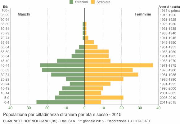 Grafico cittadini stranieri - Roè Volciano 2015