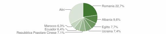 Grafico cittadinanza stranieri - Senago 2019