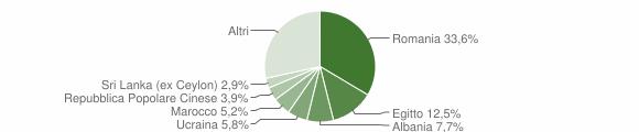 Grafico cittadinanza stranieri - Siziano 2019