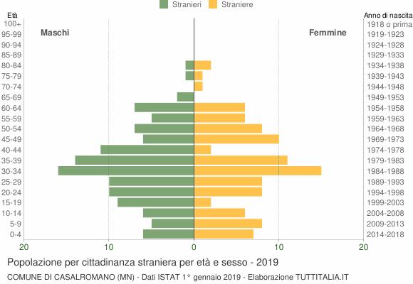 Grafico cittadini stranieri - Casalromano 2019