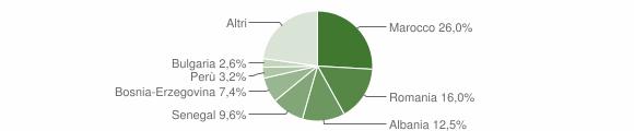 Grafico cittadinanza stranieri - Carvico 2010