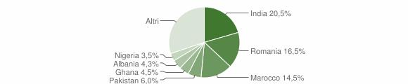 Grafico cittadinanza stranieri - Dello 2009