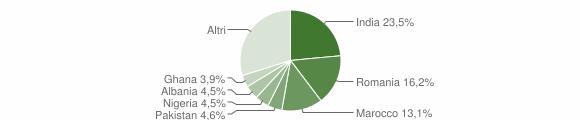 Grafico cittadinanza stranieri - Dello 2013