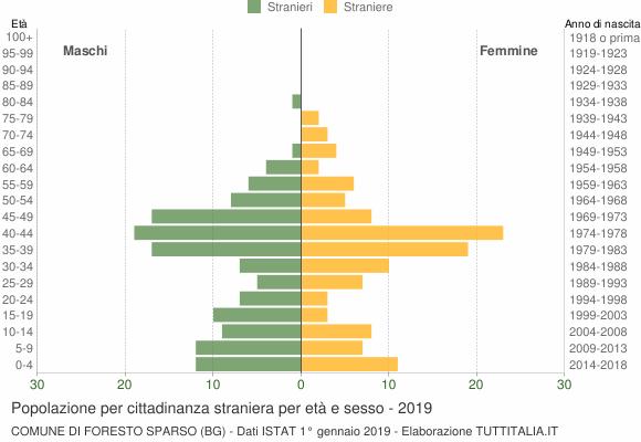 Grafico cittadini stranieri - Foresto Sparso 2019