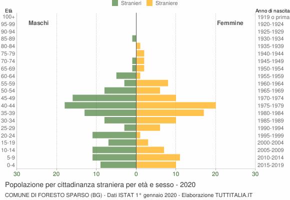 Grafico cittadini stranieri - Foresto Sparso 2020
