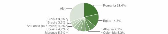 Grafico cittadinanza stranieri - Sirmione 2010