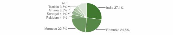 Grafico cittadinanza stranieri - Visano 2016
