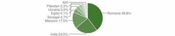 Grafico cittadinanza stranieri - Visano 2019