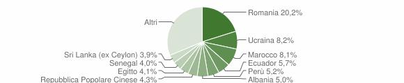 Grafico cittadinanza stranieri - Arcore 2019