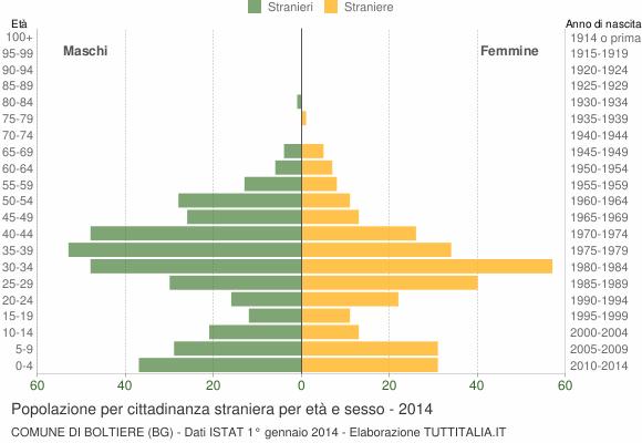 Grafico cittadini stranieri - Boltiere 2014