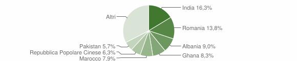 Grafico cittadinanza stranieri - Borgo Virgilio 2019