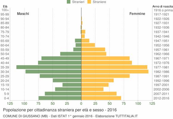 Grafico cittadini stranieri - Giussano 2016