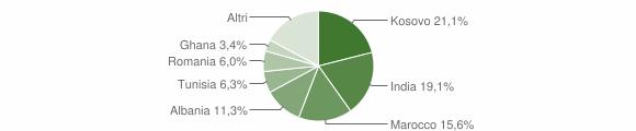 Grafico cittadinanza stranieri - Orzinuovi 2009