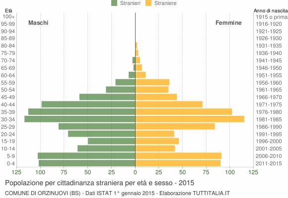 Grafico cittadini stranieri - Orzinuovi 2015
