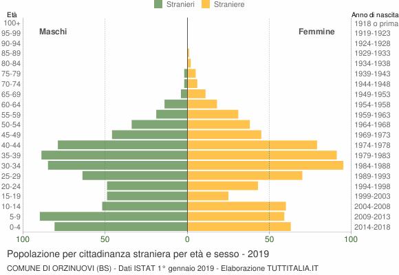 Grafico cittadini stranieri - Orzinuovi 2019