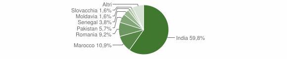 Grafico cittadinanza stranieri - Pavone del Mella 2009