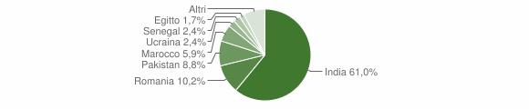 Grafico cittadinanza stranieri - Pavone del Mella 2014