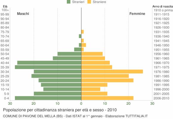 Grafico cittadini stranieri - Pavone del Mella 2010
